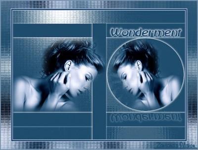 ZV_wondermentvar