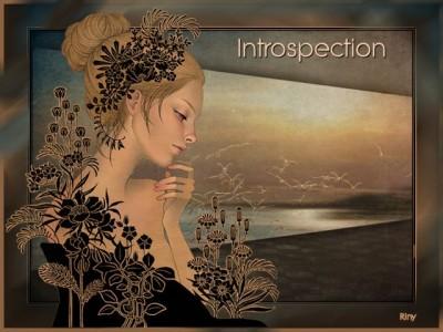 les introspection