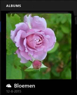 image_thumb.png